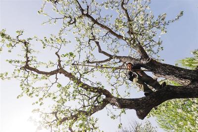 唐山遵化:春忙