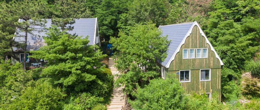 溪水潺潺、鸟语花香…青岛这里打造乡村旅游新名片