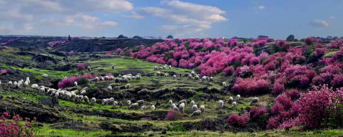 牡丹江镜泊熔岩台地