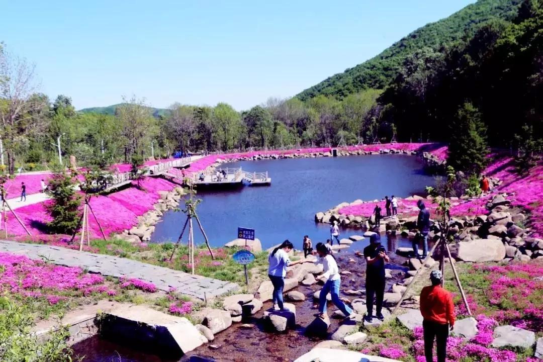 双鸭山青山国家森林公园