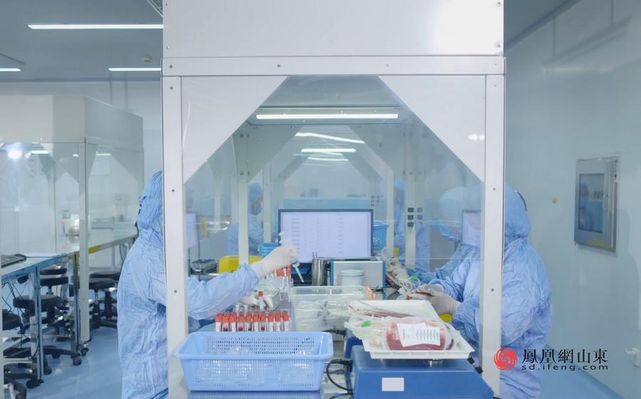 助力大健康<font color=red>战略</font>实施,山东省脐血库打造造血干细胞库产业高地