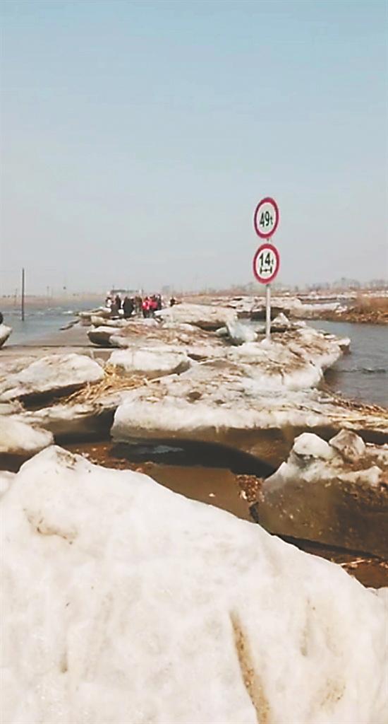 大量冰排上岸 网友视频截图