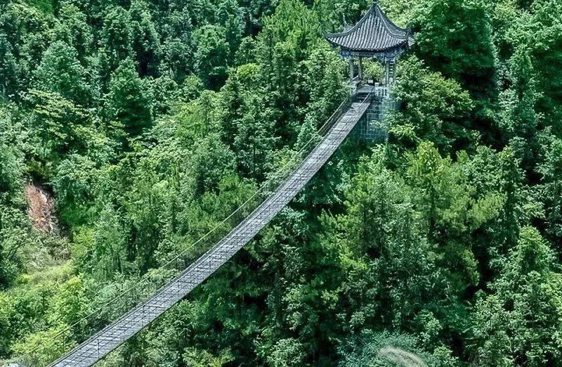 """△卧龙铁索桥。图by 公众号""""掌上恩施"""""""