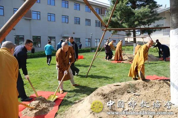 中国佛教协会各部室负责人及以上人员在中国佛学院新校区植树(图片来源:中国佛教协会)