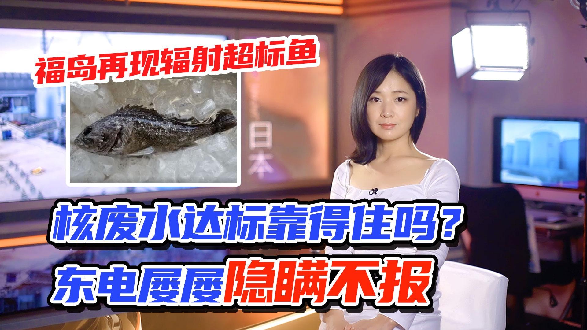 李淼的日本观察114:福岛再现辐射超标鱼 核废水达标靠得住吗?