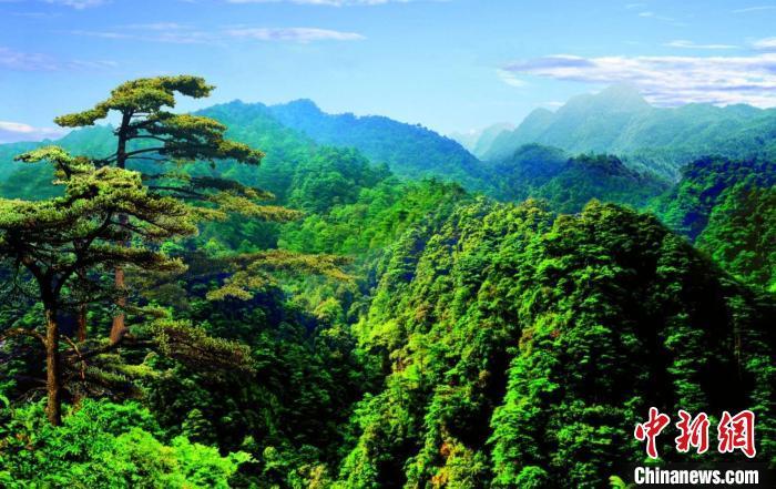 广东省级以上生态公益林达7150万亩居全国前列
