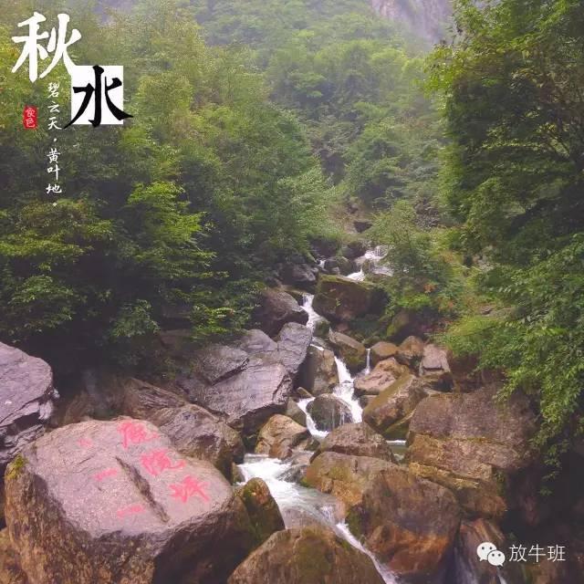 """△鹿苑坪。图by 公众号""""放牛班"""" 大秦老师提供"""