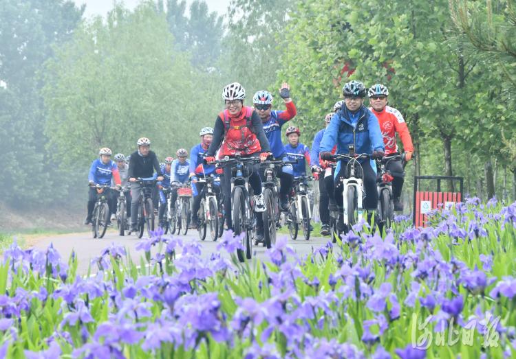"""2021年4月22日,河北省邯郸市永年区征途单车俱乐部的骑友们在""""世界地球日""""主题宣传活动上骑行。"""