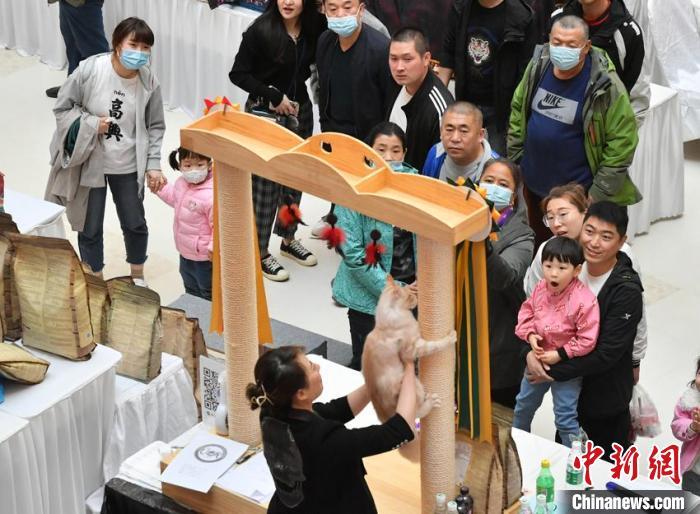 比赛吸引众多市民前来观看 张瑶 摄