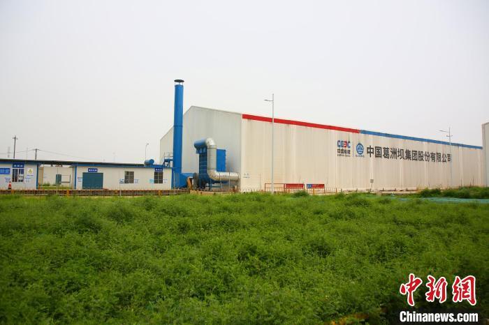 武汉汉江湾生态修复项目(二期)现场草木茂盛。 王康荣 摄