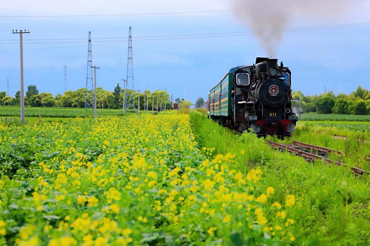 桦南百年森林蒸汽火车旅游区