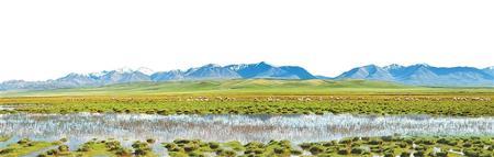 高原草甸湿地 摄影:脱兴福