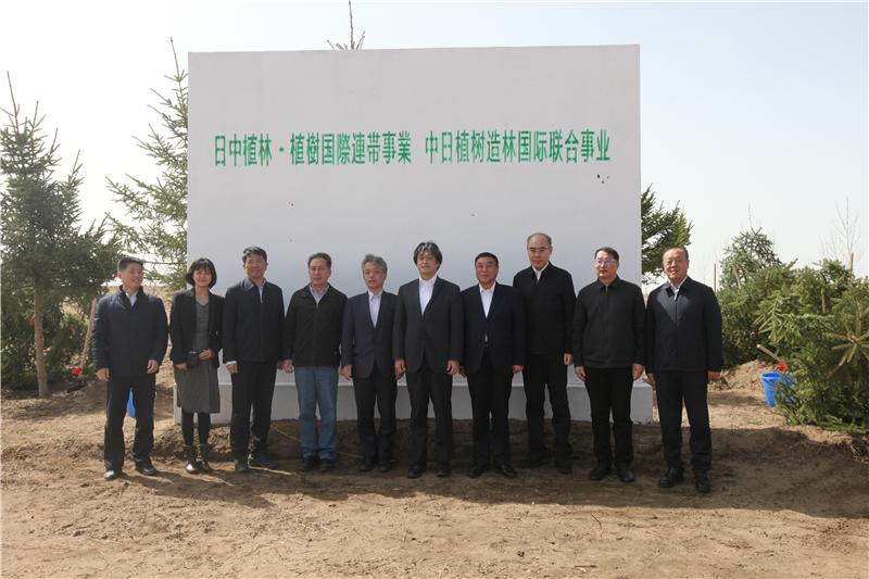 全国首批!黑龙江省大庆市中日嫩江沙地防风固沙造林植树项目启动