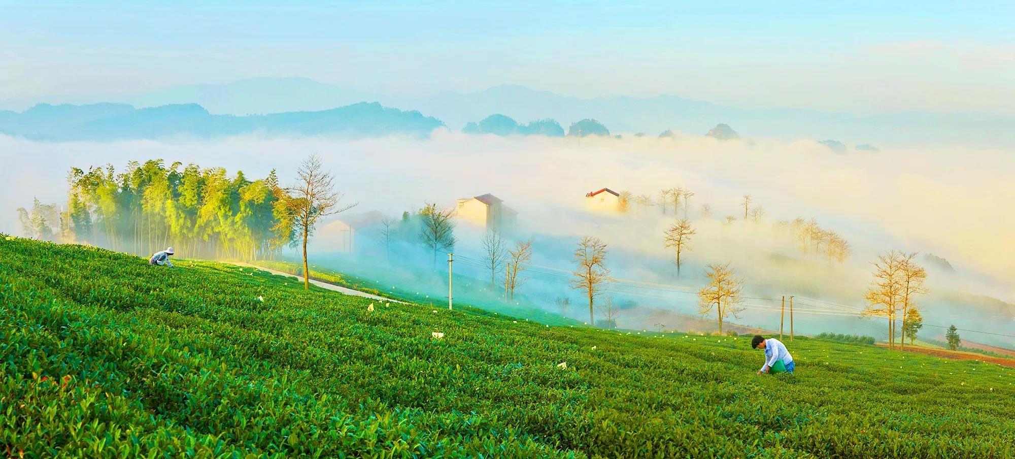 绍兴新昌县:被唐代诗人青睐的山水秘境