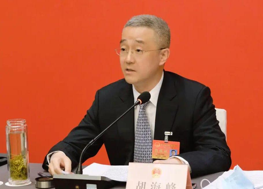 胡海峰和代表们一起审议政府工作报告 来源:丽水发布