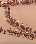 场面壮观!游客在敦煌景区骑骆驼排队上山