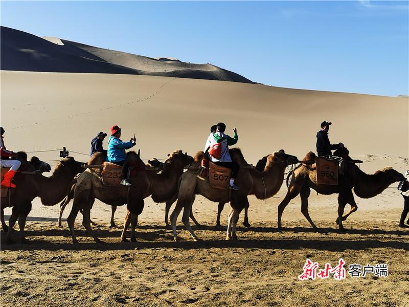 鸣沙山上的驼队 新甘肃·甘肃日报记者 张文博