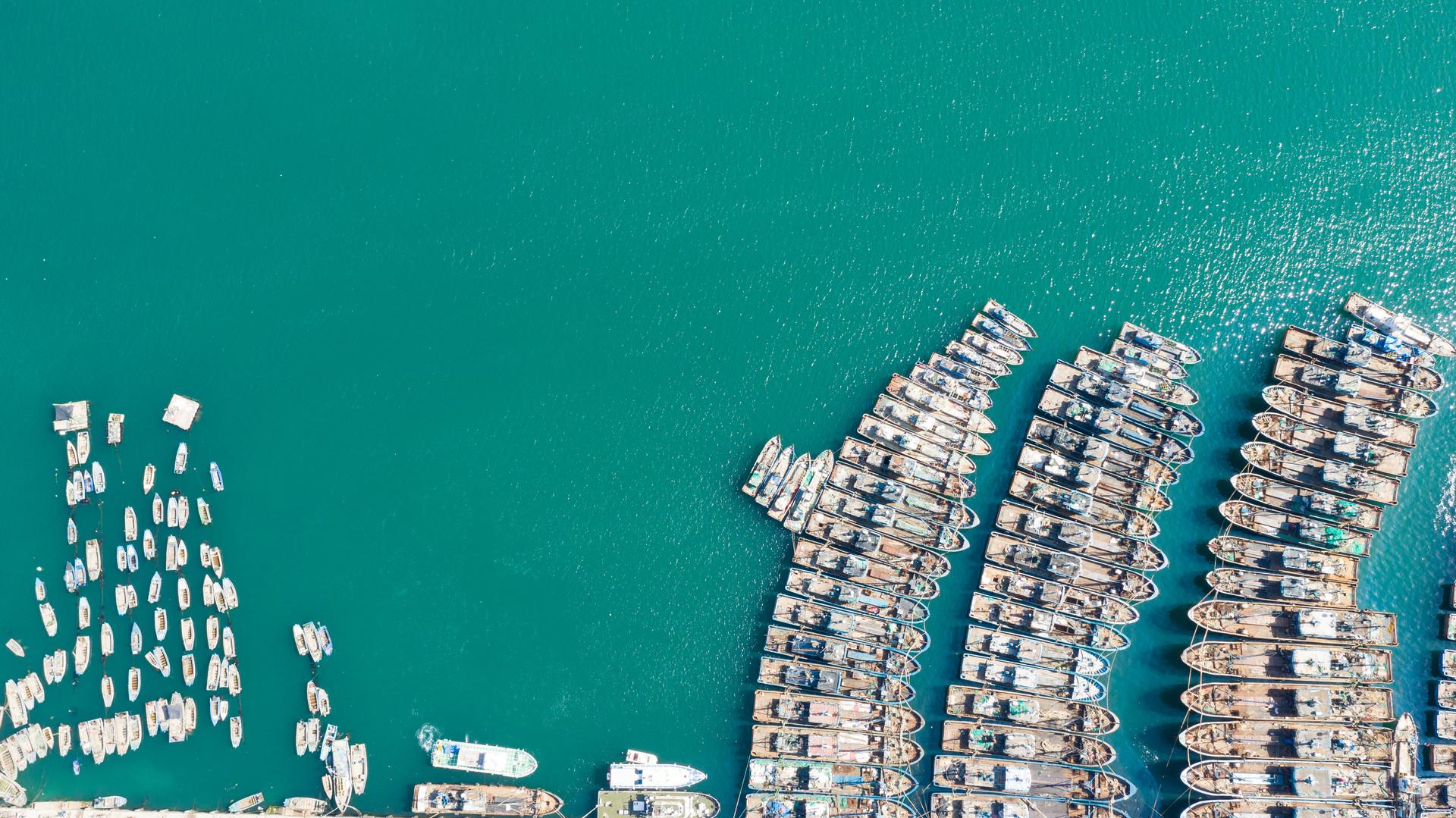 最后一船渔获上岸 5月黄渤海2021年伏季休渔开启