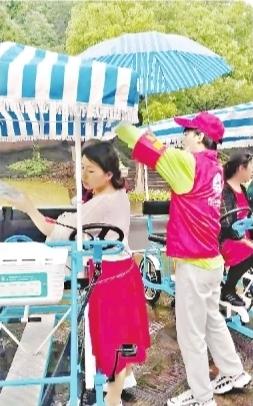 在蔡甸香草伊甸园,志愿者打伞接送游客。