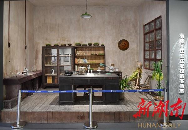 (隆平水稻博物馆内复原了袁隆平在安江农校的科研场景。湖南日报·华声在线记者 童迪 摄)