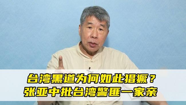 台湾黑道为何如此猖獗?张亚中一针见血