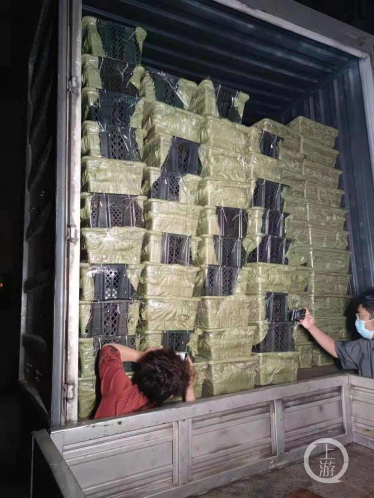 ▲5月3日晚,四川成都,装有160余只小猫小狗的快递车。图片来源/受访者供图