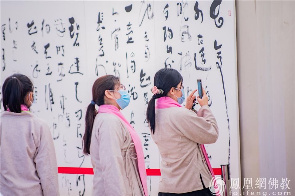 禅茶学员伫足观赏草书作品:弘一大师《送别》(图片来源:凤凰网佛教 摄影:和曦)