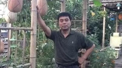 """受赵丽蓉的启发,""""城市农夫""""张贵春在自家屋顶种菜"""