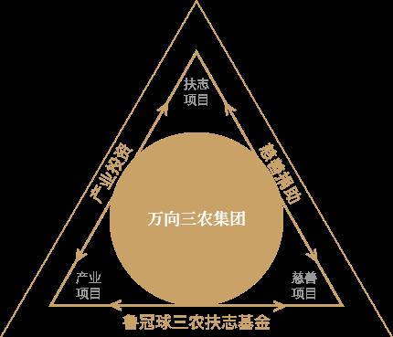 鲁冠球三农扶志基金运作结构