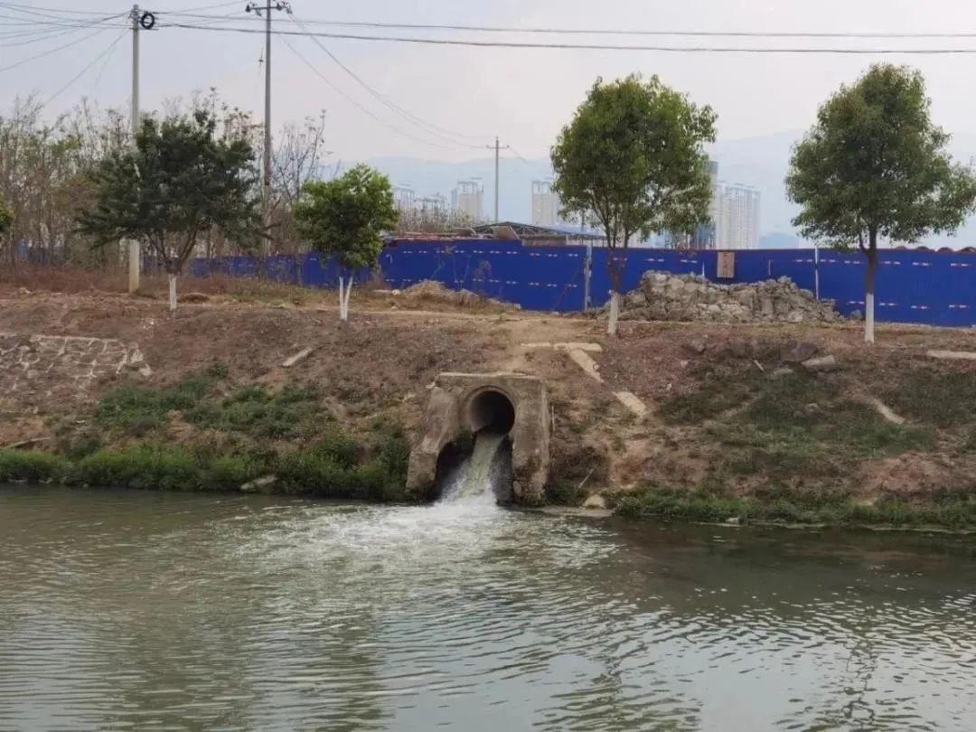 污水溢流进入东河