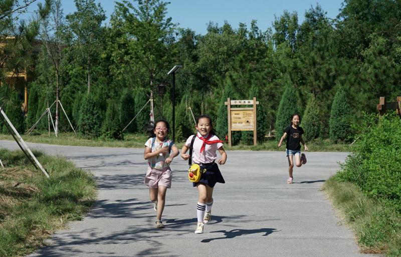 """小学生们在""""千年秀林""""内玩耍(2019年8月29日摄)。新华社记者牟宇 摄"""