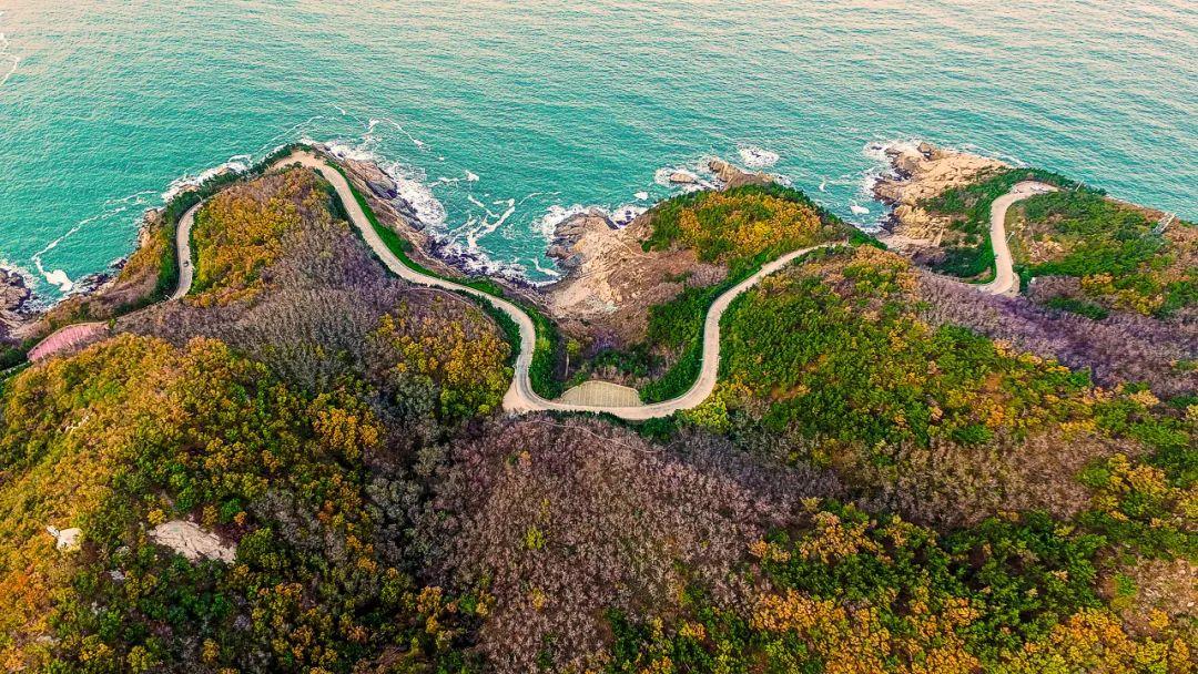 这座海滨城市又被央视点名了,不是厦门不是青岛不是三亚!