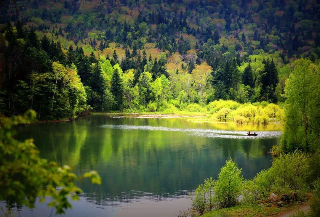 ▲拉法山国家森林公园