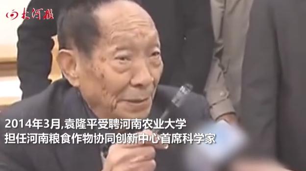 袁隆平的河南情结:受聘河南农业大学,曾多次为河南粮食生产支招