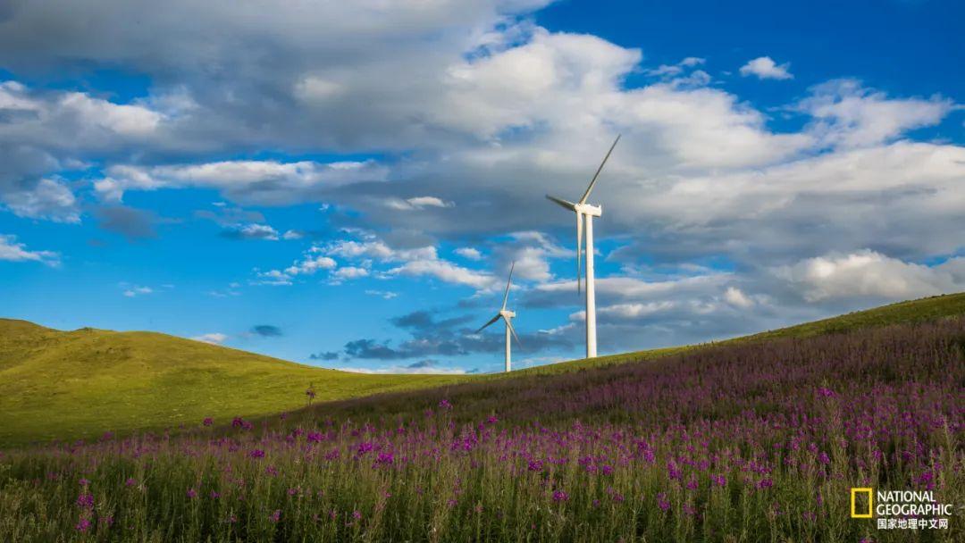 位于呼和浩特和乌兰察布之间的辉腾锡勒草原