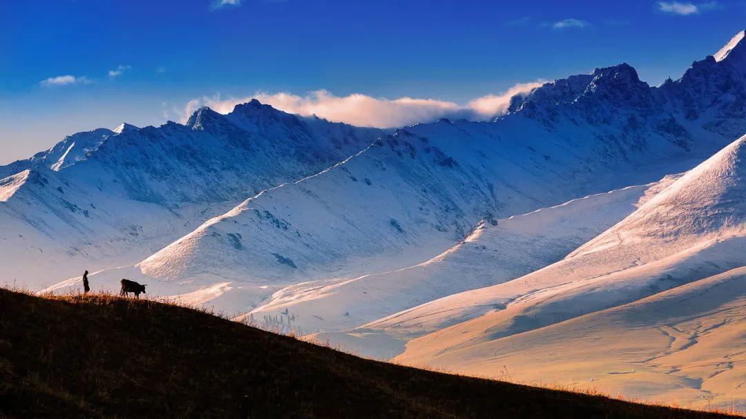 △ 冬天的那提拉草原。图by 网络