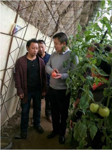 沈阳市辽中区卡北村党支部 | 顺民意 谋振兴