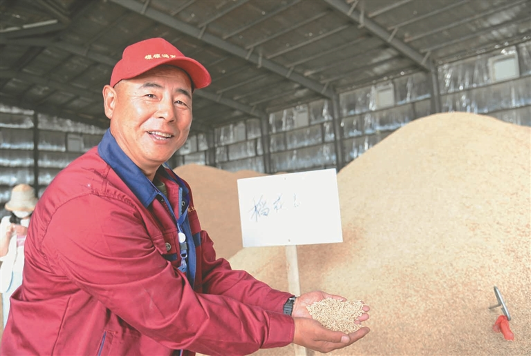 有了沿江提水灌区,大大节约了水稻种植成本。