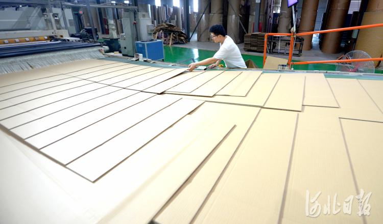 在河北省广宗县岳之峰包装科技有限公司工人正在加工产品。河北日报记者杜柏桦摄影报道
