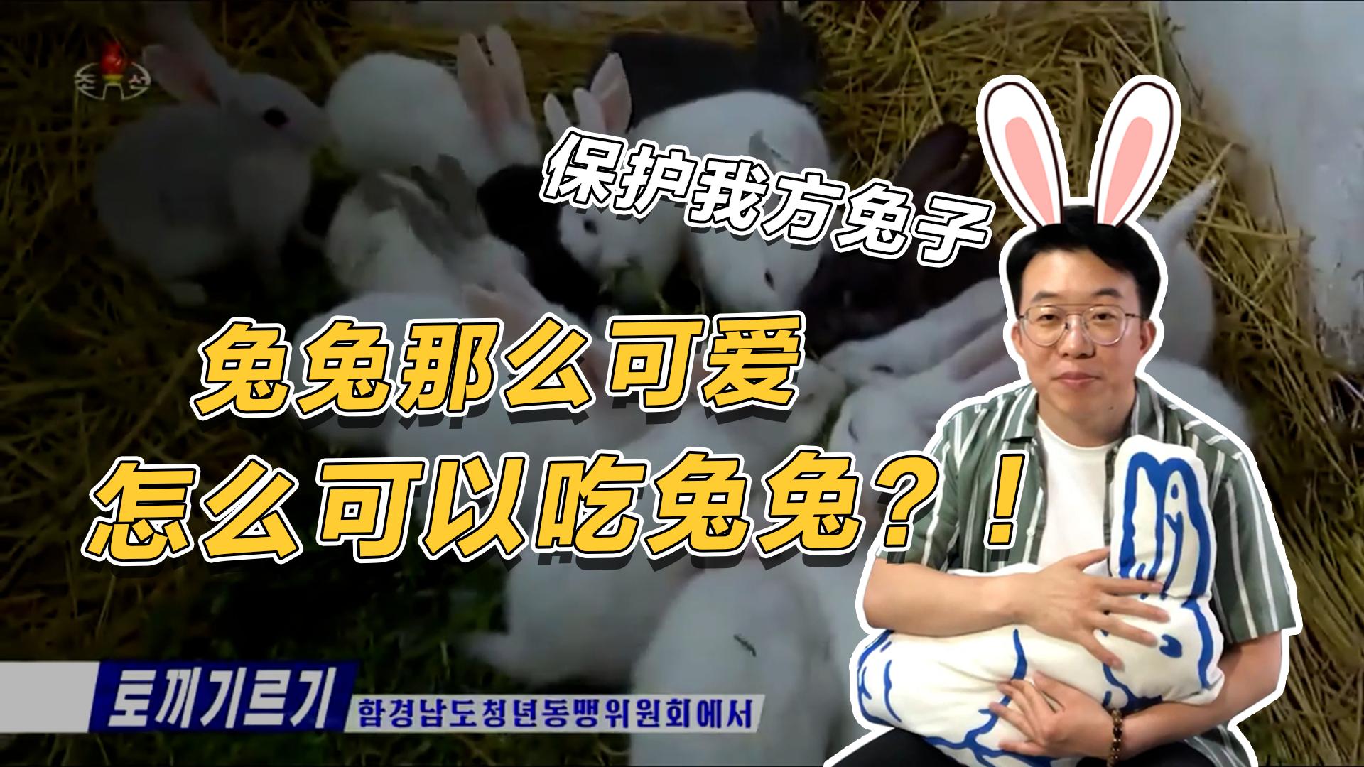 霍霍看今朝7|朝鲜发展从学生抓起?学校建兔子运动场 养兔子成必修课