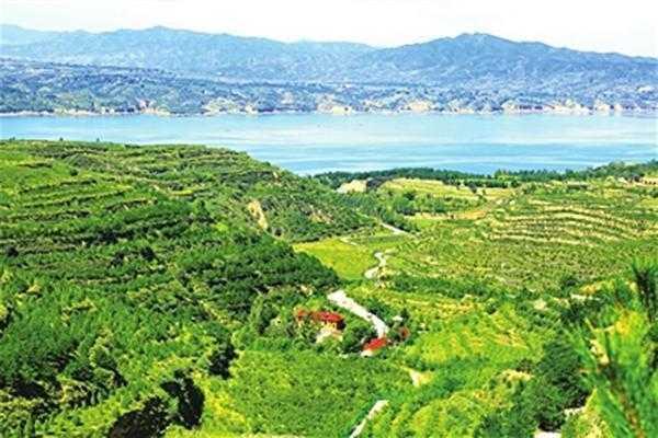 娄烦县汾河水库生态旅游景区绿化