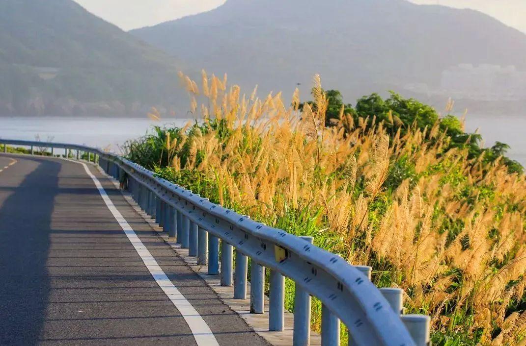 """△ 黄龙岛沿海公路。图by 公众号""""乐活LULU"""""""