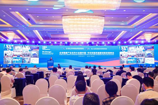 全球健康产业合作大会暨中国—中东欧医药健康创新发展峰会现场