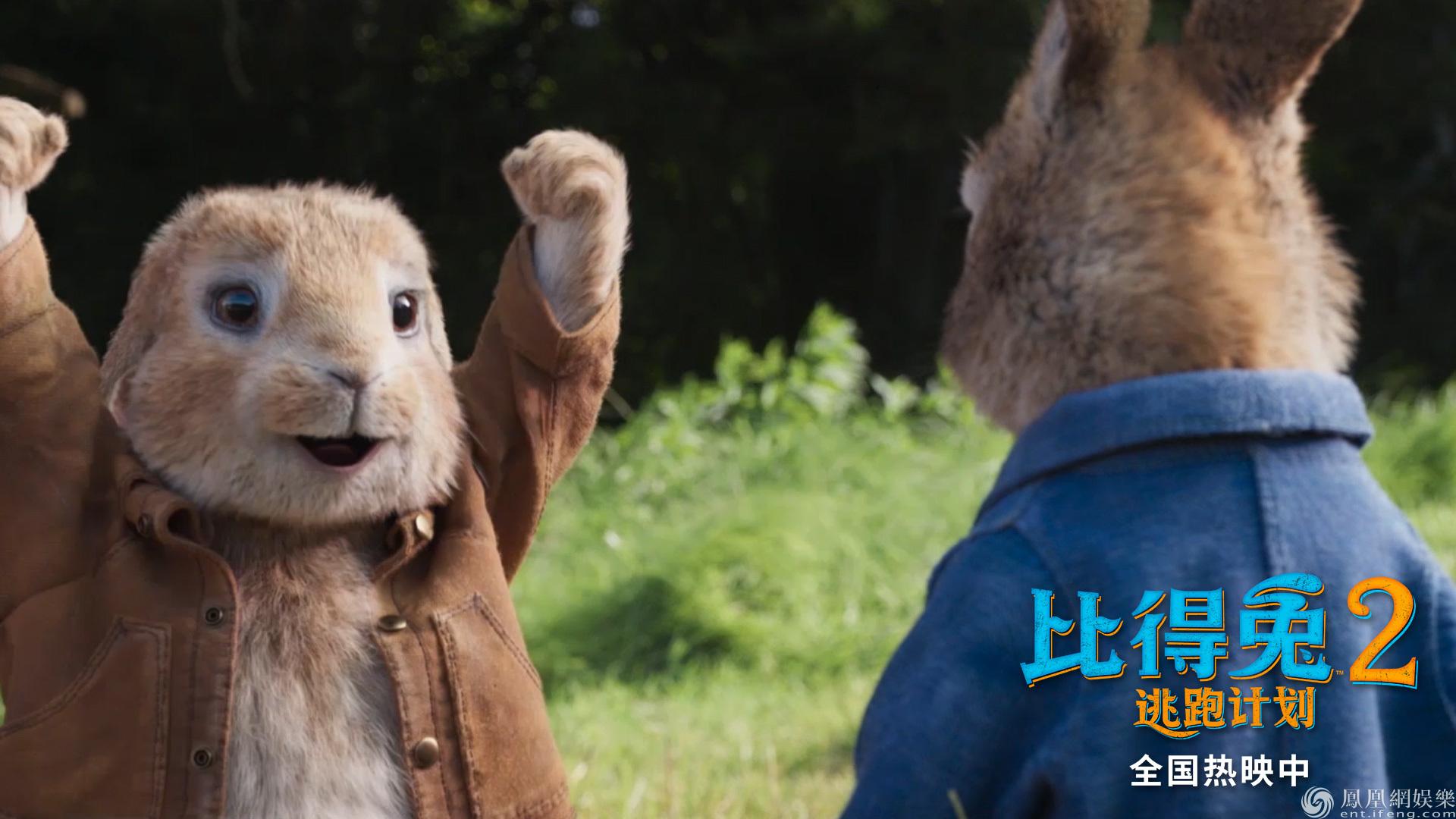 《比得兔2:逃跑计划》剧照