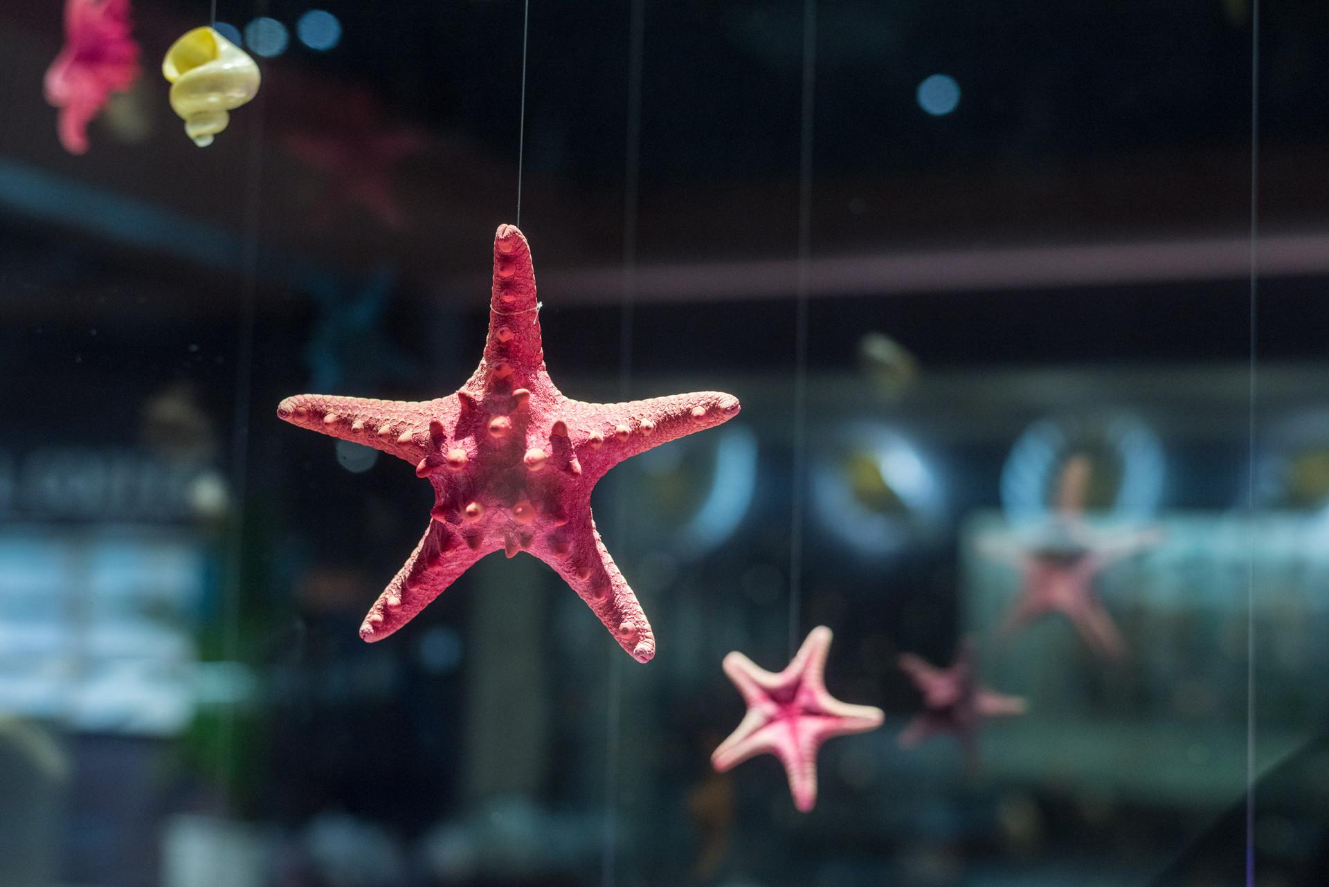 青岛这些颜值超高的网红博物馆,简直不要太好看!