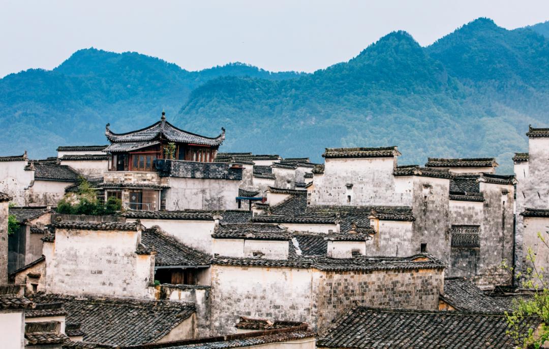 这座迟来的历史文化名城里 藏着真正的梦里水乡