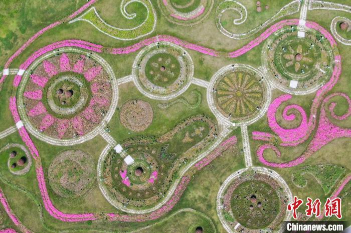 俯瞰由花卉组成的图案。 泱波 摄