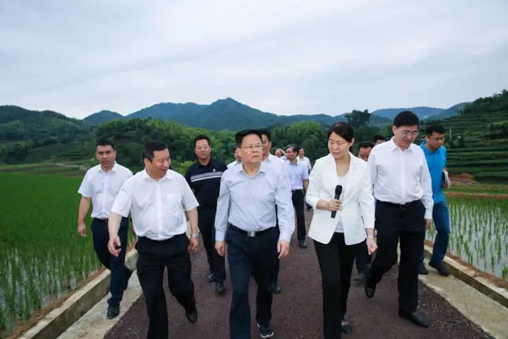 6月21日,省长郑栅洁检查岭口畈土地综合整治项目。
