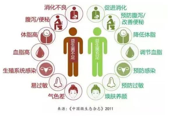 最懂国人肠胃的益生菌,每天一包,轻松调理肠胃,养出好肤色
