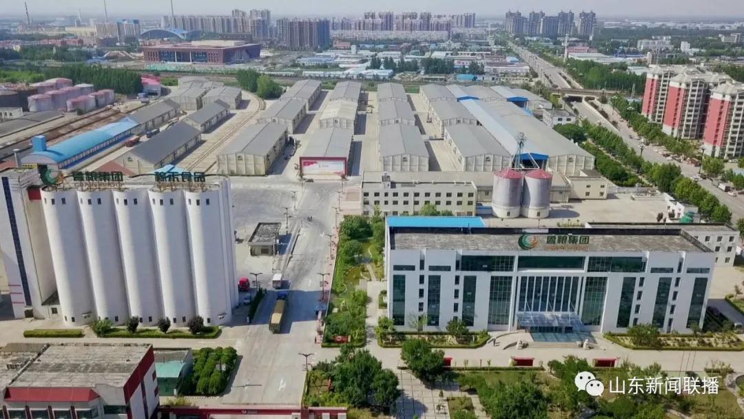 鲁粮集团山东齐河国家粮食储备库